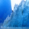 tgb_sl View all userpics