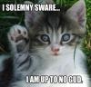 facecat userpic