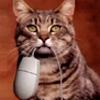 catmoran userpic