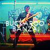buckaroo userpic