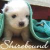 shirebound userpic