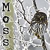 moss6886 userpic
