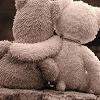 ursinhos View all userpics