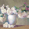 furriboots userpic