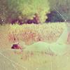lady_of_astolat userpic