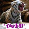 tiger_cub userpic