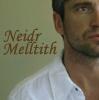 neidr_melltith userpic