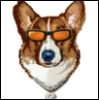 wildcorgi userpic