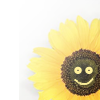 paraka: NF-:) Flower