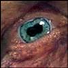 hobb_staff View all userpics