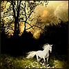 wildhorse userpic