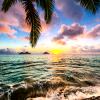 coconutt userpic