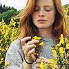 laurusnobilis_ View all userpics