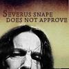 Aldi: HP: Severus Snape does not approve