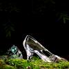 enchantedmod userpic