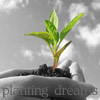 planting_dreams userpic