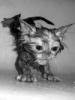 purrfus userpic