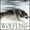 wolfling View all userpics